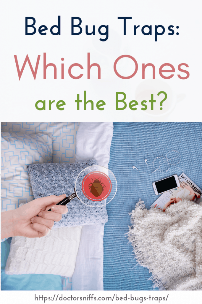 best bed bug traps. Hand holding magnifying glass and showing a bed bug.