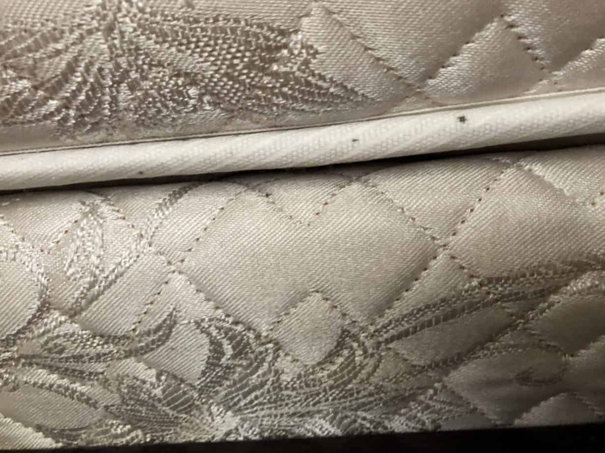 mattress showing fecal matter.