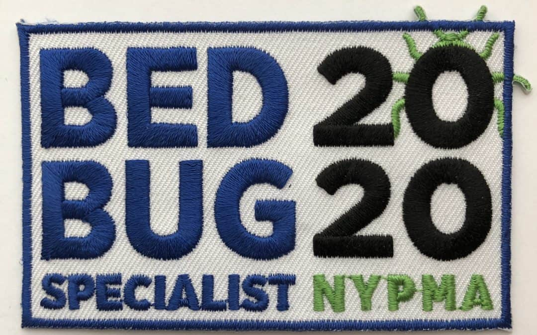 Best Bed Bug Steamer! [And Do They Actually Work]