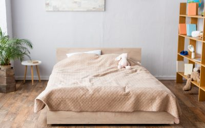 Best Mattress and Box Spring Covers for Bed Bugs