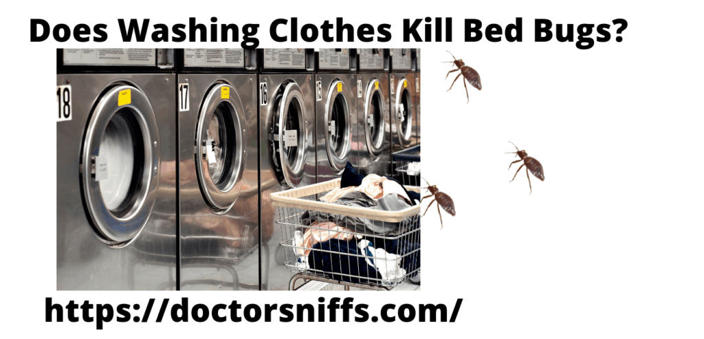 Industrial washing machines, with clothing and bed bugs
